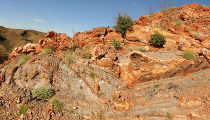 Fossils From Ancient Hot Springs Suggest Life May Have Evolved on Land