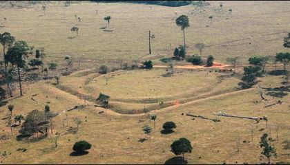 Satellite Images Reveal 81 Pre-Hispanic Settlements in the Amazon