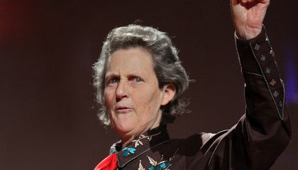 What Makes Temple Grandin's Brain Special?