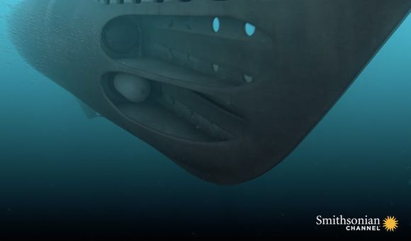 Preview thumbnail for video'A British Submarine Fires Its Torpedoes at a Nazi U-Boat
