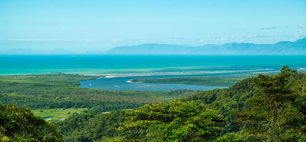 Daintree River and Rainforest