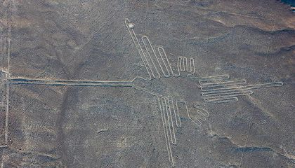 Scientists Identify Exotic Birds Depicted in Peru's Mysterious Nazca Lines