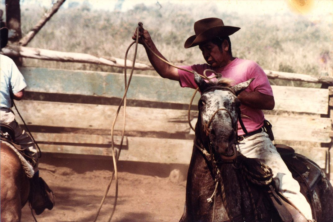 A man in cowboy hat and pink shirts sit atop a horse. The horse's face is contorted.