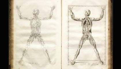 The Grisly Details of Early Anatomy Textbooks