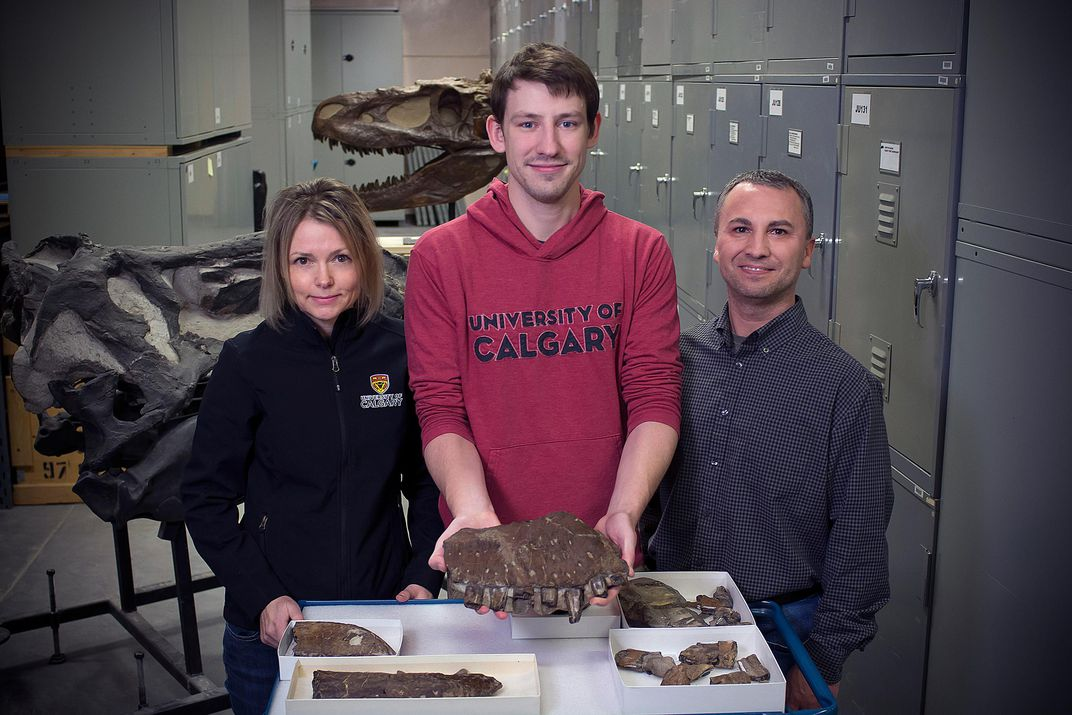 Zelenitsky and Voris and Therrien with Thanatotheristes_ credit Royal Tyrrell Museum.jpg