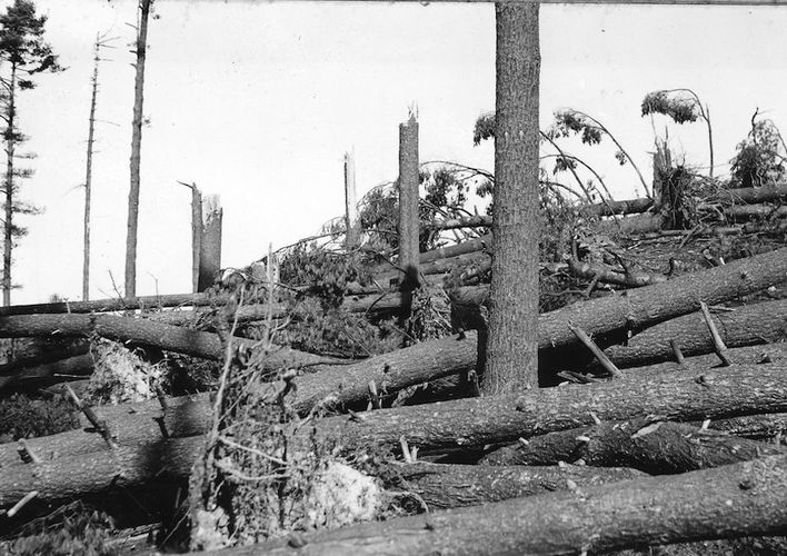 Caption: The 1938 Hurricane That Revived New England's Fall