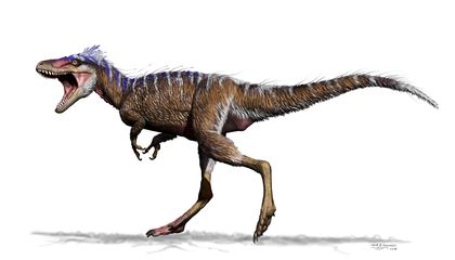 Meet T. Rex's Teeny Cousin Whose Name Means 'Impending Doom'