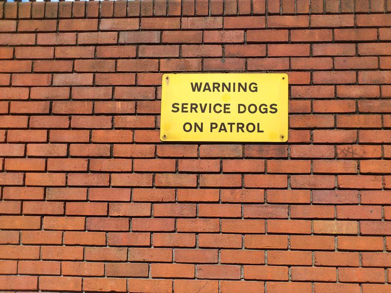 Service Dogs Sign