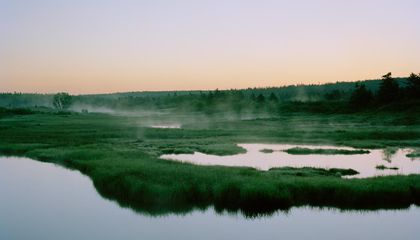 marsh  ponds;  mavilette,  nova  scotia 2014
