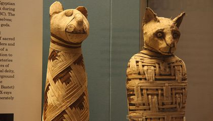A Third of Animal Mummies Contain no Animals at All