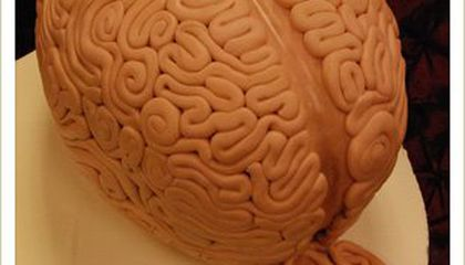 This is Your Brain…In Cake