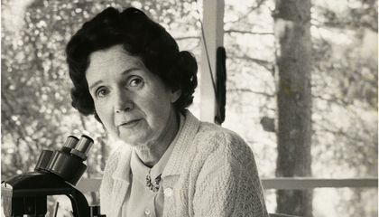 Rachel Carson Wrote Silent Spring (Partly) Because of the Author of Stuart Little