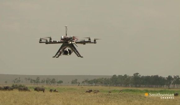 Preview thumbnail for video'EXPIRED - Drones Bring You Shockingly Close to Africa's Wildlife