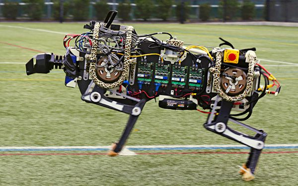 "Scientists build robot that runs, call it ""cheetah"""