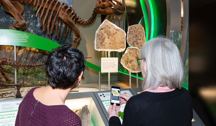 """Museum staff, Laura Donnelly-Smith and Sally Love, try out the new audio description app in the """"Hall of Fossils – Deep Time."""" (Lucia RM Martino, Smithsonian Institution)"""