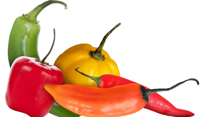 Group of red, yellow, orange, green peppers. (Biomuseo)