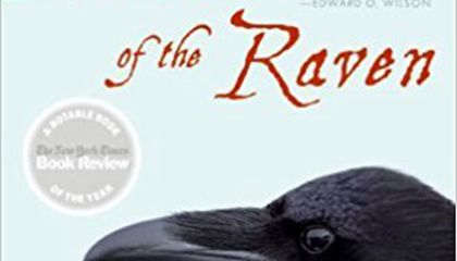Review of 'Mind of the Raven'