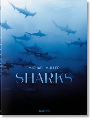 Preview thumbnail for video 'Michael Muller: Sharks, Face-to-Face with the Ocean's Endangered Predator