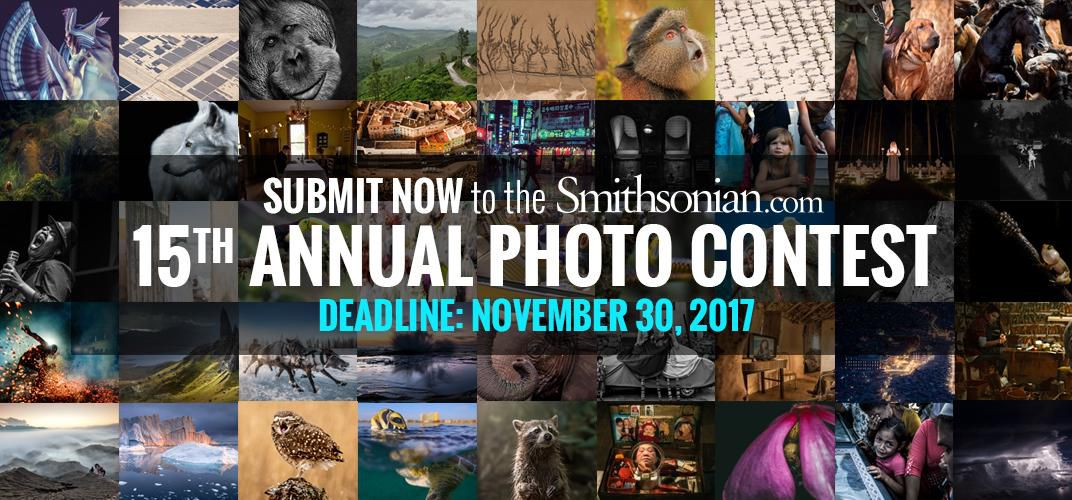 Caption: Submit to Smithsonian.com's 15th Annual Photo Contest