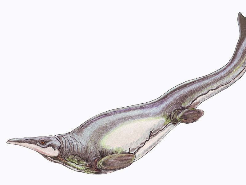 These Prehistoric Sea Monsters Had a Mean Breast Stroke