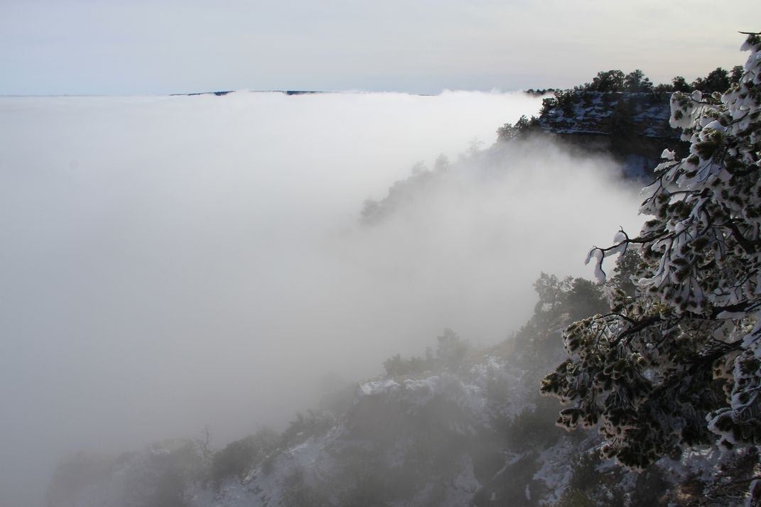 Rare Look Spectacular Photos Capture The Grand Canyon Filled With - Rare weather event fills grand canyon with fog and gives us this breathtaking sight