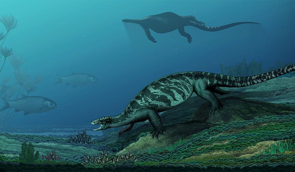 An artist's impression of <i>Eorhynchochelys sinensis</i>, which was over six feet long and had a long tail.