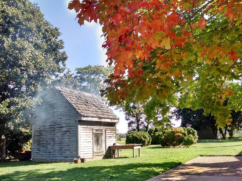 A small wooden house with smoke rising from the roof, framed by bright red and green fall foliage and green grass