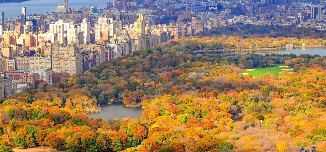 Autumn colors of New York's Central Park, with the Hudson River in the distance