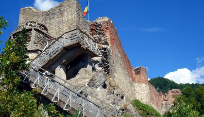 A Bear and Her Cubs Took Over Vlad the Impaler's Castle