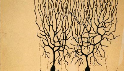 Happy Birthday to the Father of Modern Neuroscience, Who Wanted to Be an Artist