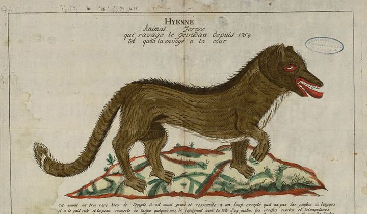 When the Beast of Gévaudan Terrorized France