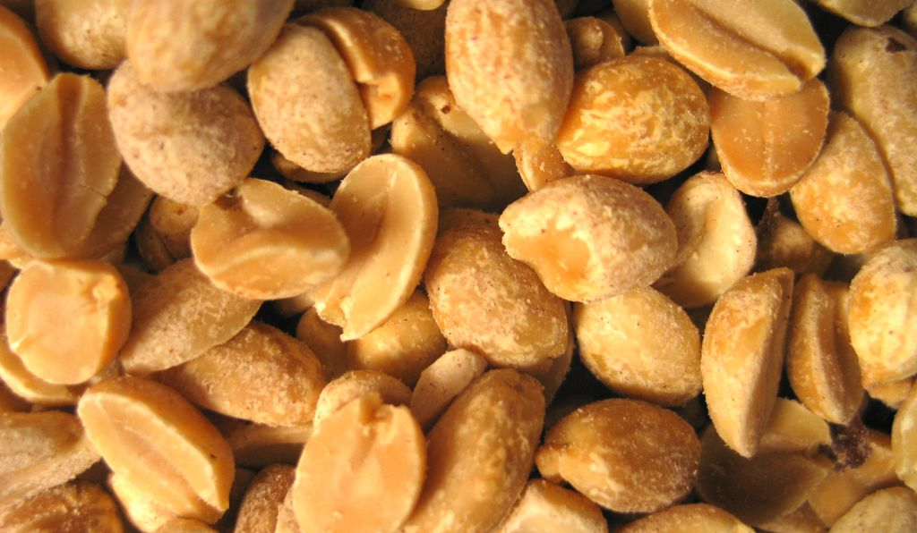 Peanuts: the sworn foe of millions of allergic Americans.