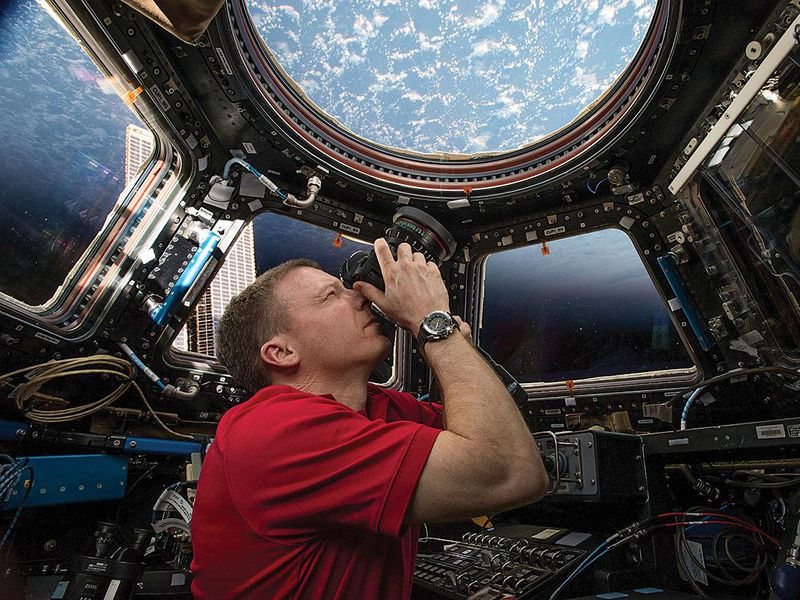 Terry Virts looks through ISS cupola
