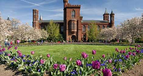 Shake off winter with a scavenger hunt in the Smithsonian Gardens.