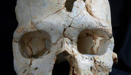 Investigating the Case of the Earliest Known Murder Victim