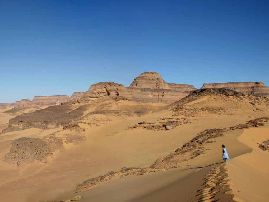 Fossilized Fish Bones in the Sahara Desert Show How Diets Changed With the Climate