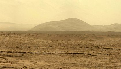 Did Life Come Here From Mars?