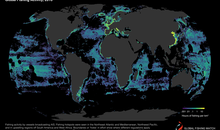 Tracking Fishing Vessels Reveals Industry's Toll on the Ocean