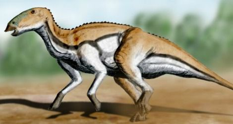 A restoration of the island hadrosauroid Tethyshadros by Nobu Tamura