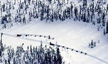 Above & Beyond: The Iditarod Air Force