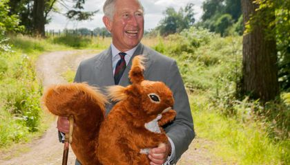 Prince Charles Will Battle Squirrels Using Contraceptives and a Lot of Nutella