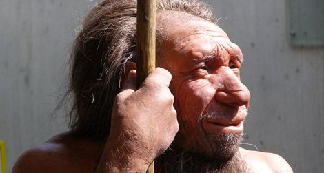 A reconstruction of a Neanderthal, which was named after Germany's Neander Valley