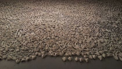 One Million Bones To Transform the Mall Into a Symbolic Mass Grave