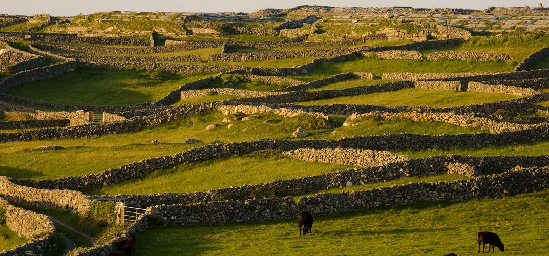 Stone fences on Inishmore at dusk