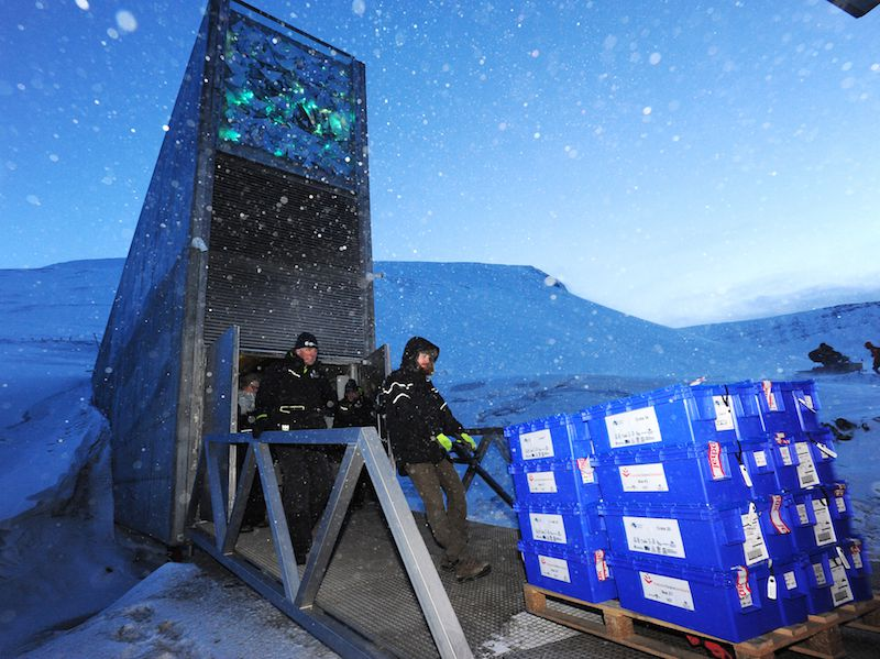 Global Seed Vault Gets Its Millionth Donation And A 13 Million