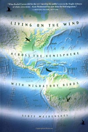 Preview thumbnail for video 'Living on the Wind: Across the Hemisphere With Migratory Birds