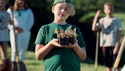 The Complicated Growth of 4-H
