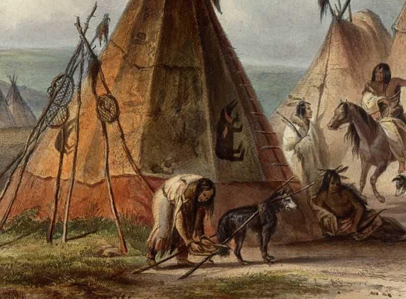 Ancient Dogs Weren't the Workhorses We Thought They Were