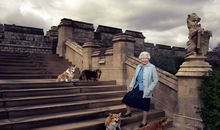 The Last of the Queen's Corgi Dynasty Has Died