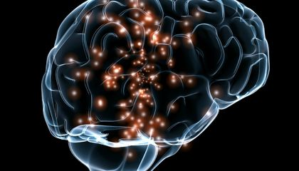 Could Implants in the Brain Revive Memory?